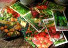 10 января - очередное занятие  Нижегородского областного любительского объединения  садоводов и огородников