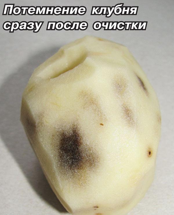 Почему картофель горький после варки
